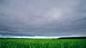 Σύννεφα Timelapse πέρα από τον τομέα φιλμ μικρού μήκους