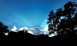 Σύννεφο αγελάδων Στοκ Φωτογραφίες