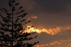σύννεφο χρυσό Στοκ Εικόνες