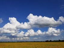 Σύννεφο Scape στοκ φωτογραφία με δικαίωμα ελεύθερης χρήσης