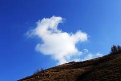 Σύννεφο Tortoise Στοκ Εικόνες