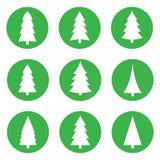 Σύνολο άσπρων χριστουγεννιάτικων δέντρων σε έναν πράσινο κύκλο σε ένα άσπρο υπόβαθρο στοκ φωτογραφίες