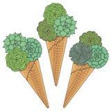 Σύνολο έγχρωμων εικονογραφήσεων του παγωτού από τα succulents Απομονωμένα διανυσματικά αντικείμενα Στοκ φωτογραφίες με δικαίωμα ελεύθερης χρήσης