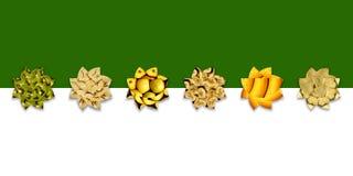 Σύνολο έξι αφηρημένο μορφών λουλουδιών των fruity συστάσεων Στοκ Εικόνα