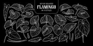 Σύνολο απομονωμένου φλαμίγκο σε 19 μορφές Χαριτωμένη συρμένη χέρι άσπρη περίληψη απεικόνισης λουλουδιών διανυσματική μόνο Στοκ φωτογραφίες με δικαίωμα ελεύθερης χρήσης