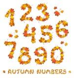 Σύνολο αριθμών φθινοπώρου Στοκ Εικόνες