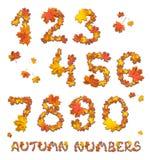 Σύνολο αριθμών φθινοπώρου Στοκ εικόνα με δικαίωμα ελεύθερης χρήσης