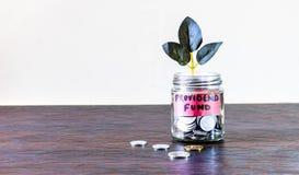 Σύνολο βάζων γυαλιού των νομισμάτων και μια ανάπτυξη εγκαταστάσεων μέσω του στοκ εικόνες