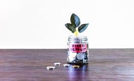 Σύνολο βάζων γυαλιού των νομισμάτων και μια ανάπτυξη εγκαταστάσεων μέσω του στοκ φωτογραφία με δικαίωμα ελεύθερης χρήσης