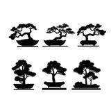 Σύνολο δέντρου μπονσάι στο άσπρο υπόβαθρο Ελεύθερη απεικόνιση δικαιώματος