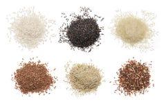 Σύνολο διάφορου ρυζιού Στοκ Εικόνα