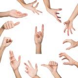 Σύνολο διάφορων χειρονομιών χεριών που απομονώνονται στο λευκό Στοκ εικόνα με δικαίωμα ελεύθερης χρήσης
