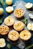 Σύνολο διαφορετικών μίνι πιτών μήλων Επιδόρπιο ζύμης φθινοπώρου στοκ εικόνα