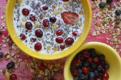 Σύνολο δύο κίτρινο πιάτων Oatmeal, των σπόρων chia, των φρέσκων μούρων, των σπόρων, των καρυδιών και του γάλακτος στοκ φωτογραφία με δικαίωμα ελεύθερης χρήσης