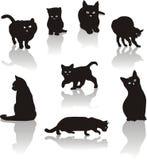 σύνολο εικονιδίων γατών Στοκ Εικόνα