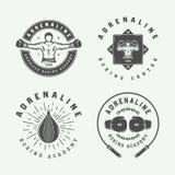 Σύνολο εκλεκτής ποιότητας ετικετών εγκιβωτισμού και λογότυπων πολεμικών τεχνών διακριτικά και στο αναδρομικό ύφος διανυσματική απεικόνιση