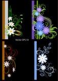 Σύνολο εορταστικών πλαισίων για τις φωτογραφίες διακοσμημένος με τα αφηρημένα λουλούδια απεικόνιση αποθεμάτων