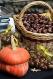 Σύνολο καλαθιών των κάστανων στο στάβλο και μια πορτοκαλιά κολοκύνθη Στοκ φωτογραφίες με δικαίωμα ελεύθερης χρήσης