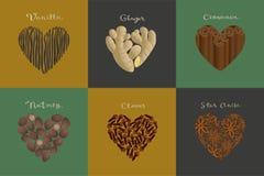 Σύνολο καρυκευμάτων στη μορφή καρδιών Βανίλια, πιπερόριζα, κανέλα, μοσχοκάρυδο, γαρίφαλα, γλυκάνισο αστεριών ελεύθερη απεικόνιση δικαιώματος
