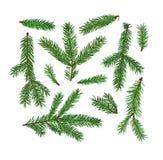 Σύνολο κλάδων δέντρων έλατου που απομονώνεται στο άσπρο υπόβαθρο Χριστούγεννα, νέο σύμβολο έτους Στοκ φωτογραφία με δικαίωμα ελεύθερης χρήσης