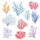 Σύνολο κοραλλιών Watercolor διανυσματική απεικόνιση