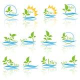 Σύνολο λογότυπου οικολογίας χρώματος Βιο σημάδι οικολογίας χρώματος Στοκ φωτογραφίες με δικαίωμα ελεύθερης χρήσης