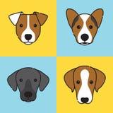 Σύνολο λογότυπων προσώπου σκυλιών Διαφορετικές φυλές Στοκ φωτογραφίες με δικαίωμα ελεύθερης χρήσης
