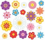 σύνολο λουλουδιών Στοκ εικόνες με δικαίωμα ελεύθερης χρήσης