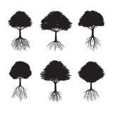 Σύνολο μαύρων δέντρων με τις ρίζες επίσης corel σύρετε το διάνυσμα απεικόνισης Στοκ φωτογραφία με δικαίωμα ελεύθερης χρήσης
