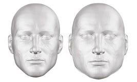Σύνολο με ένα polygonal κεφάλι ατόμων Το κεφάλι ενός παχιού και λεπτού ατόμου Το κεφάλι σπασιμάτων των παχιών ατόμων στα τεμάχια, απεικόνιση αποθεμάτων