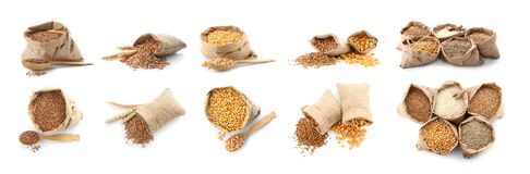 Σύνολο με τα σιτάρια διαφορετικών δημητριακών στοκ εικόνες με δικαίωμα ελεύθερης χρήσης
