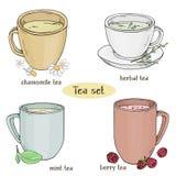 Σύνολο με τα φλυτζάνια του τσαγιού Chamomile, μέντα, βοτανικό και τσάι μούρων Ζωηρόχρωμη διανυσματική απεικόνιση στο ύφος σκίτσων διανυσματική απεικόνιση