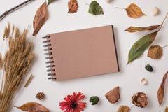 Σύνολο ξηράς χλεύης εγκαταστάσεων και τεχνών φθινοπώρου sketchbook επάνω Στοκ φωτογραφία με δικαίωμα ελεύθερης χρήσης