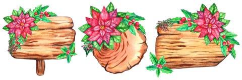 Σύνολο ξύλινων φετών watercolor διανυσματική απεικόνιση