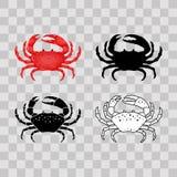 Σύνολο οριζόντια κόκκινου, μαύρου, λεπτού άσπρου καβουριού γραμμών που απομονώνεται στο διαφανές υπόβαθρο - διανυσματική απεικόνι απεικόνιση αποθεμάτων