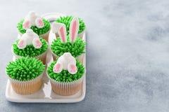 Σύνολο Πάσχας cupcakes για τα παιδιά Χλόη, αυτιά λαγουδάκι και άκρη στοκ φωτογραφίες