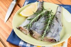 Σύνολο πιάτων με τα ακατέργαστο ψάρια μπακαλιάρων και το λεμόνι και τον κλάδο δεντρολιβάνου Στοκ εικόνες με δικαίωμα ελεύθερης χρήσης