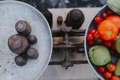 Σύνολο πιάτων των φρούτων και λαχανικών στις αναδρομικές κλίμακες στοκ εικόνα