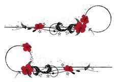 Σύνολο πλαισίων με hibiscus Στοκ εικόνα με δικαίωμα ελεύθερης χρήσης