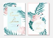 Σύνολο προτύπων καρτών πρόσκλησης γαμήλιου γεγονότος Εξωτικά ρόδινα πουλιά φλαμίγκο Μορφή σώματος όπως αυξήθηκε λουλούδι πράσινος ελεύθερη απεικόνιση δικαιώματος