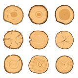 Σύνολο στρογγυλών διατομών ενός δέντρου με ένα διαφορετικό σχέδιο δαχτυλιδιών που απομονώνεται σε ένα άσπρο υπόβαθρο επίσης corel διανυσματική απεικόνιση