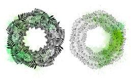 Σύνολο στρογγυλών στεφανιών των φυτών και των κλάδων με τα φύλλα με τους παφλασμούς watercolor Το αντικείμενο είναι χωριστό από τ απεικόνιση αποθεμάτων