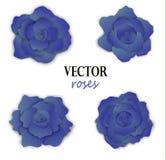 Σύνολο τεσσάρων μπλε τριαντάφυλλων εγγράφου Στοκ εικόνες με δικαίωμα ελεύθερης χρήσης