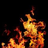 Σύνολο φλογών πυρκαγιάς που απομονώνεται απομονωμένο στο ο Μαύρος υπόβαθρο - όμορφο Στοκ Εικόνα