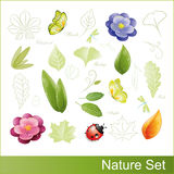 σύνολο φύσης στοιχείων απεικόνιση αποθεμάτων