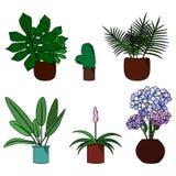 Σύνολο χαριτωμένων λουλουδιών στη διανυσματική απεικόνιση ύφους κινούμενων σχεδίων δοχείων Στοκ φωτογραφία με δικαίωμα ελεύθερης χρήσης