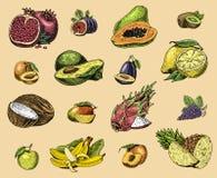 Σύνολο χεριού που σύρεται, χαραγμένοι νωποί καρποί, χορτοφάγα τρόφιμα, εγκαταστάσεις, εκλεκτής ποιότητας πορτοκάλι και μήλο, σταφ Στοκ φωτογραφία με δικαίωμα ελεύθερης χρήσης