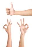 σύνολο χεριών χειρονομία& Στοκ Φωτογραφία