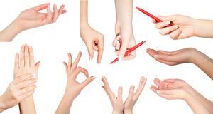 σύνολο χεριών χειρονομιώ&n Στοκ εικόνα με δικαίωμα ελεύθερης χρήσης