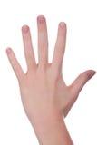 σύνολο χεριών Στοκ εικόνες με δικαίωμα ελεύθερης χρήσης